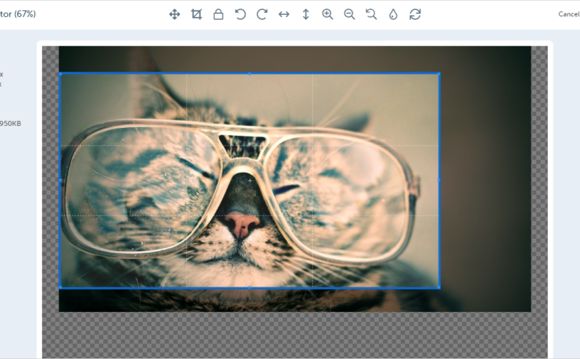 Social Publisher Picture Editor