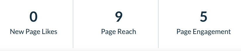 Social Page Metrics Overview Report